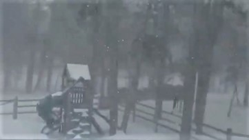 Powerful winds whip snow through backyard