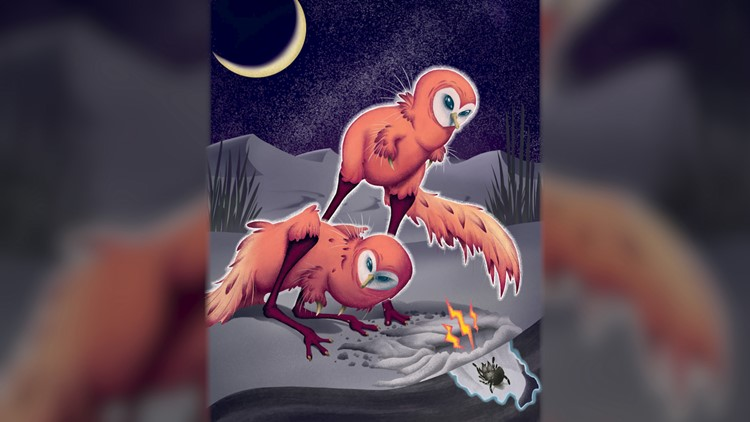 Dinosaur That Looked Like a Giant Chicken Hunted in Complete Darkness