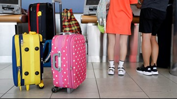 Airlines have already collected more than $1 billion in bag fees this year