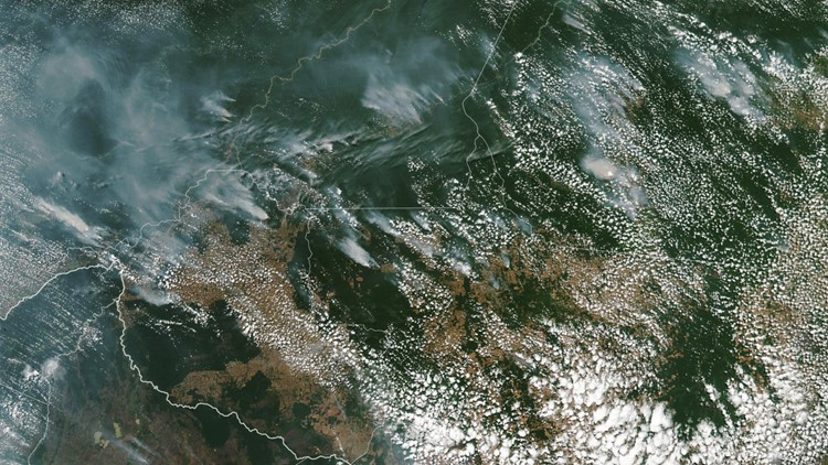 Smoke from Amazon rainforest fires can be seen from space