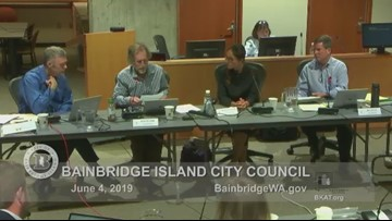 'I Didn't Reproduce Day' proposal gets strong reaction from Bainbridge City Council