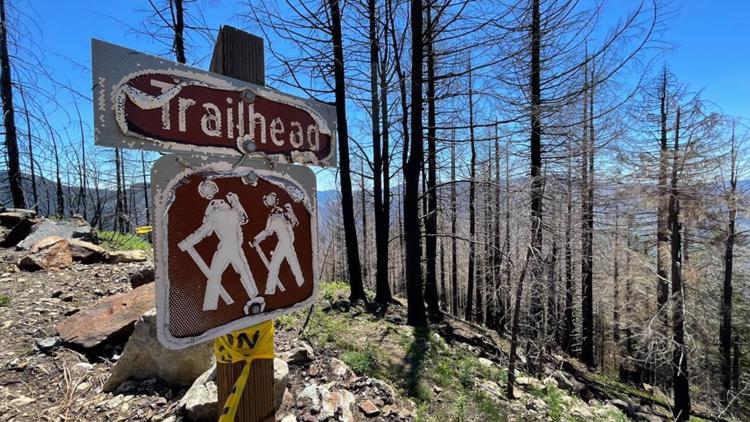 Getting a first-hand look at burned trails closed in the Santiam State Forest