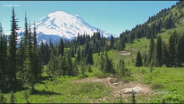 Washington's top 3 wildflower hikes from PNW guidebook author Craig Romano - KING 5 Evening