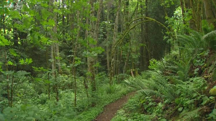 Enjoy Washington State Parks for free this Sunday