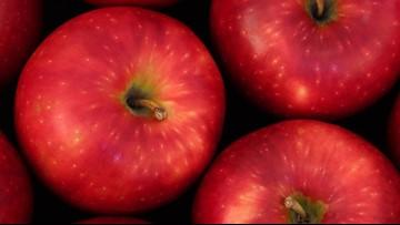 Tariffs from India take big bite out of Washington apple profits