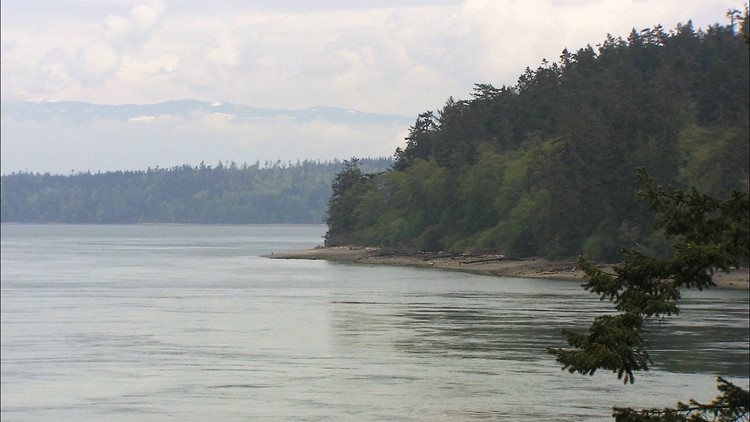 Explore Washington's state and national parks for free this Saturday