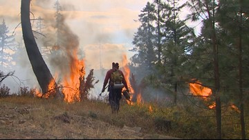 Shutdown could make wildfires worse, Washington lands commissioner says