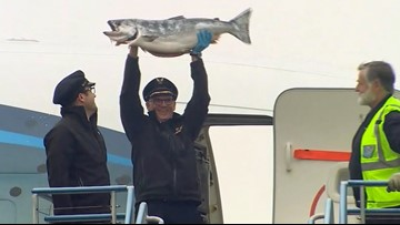 About 18,000 pounds of Copper River salmon arrives in Seattle