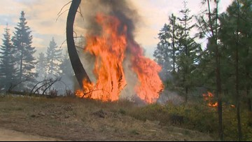 Washington unveils plan to better prevent and respond to wildfires