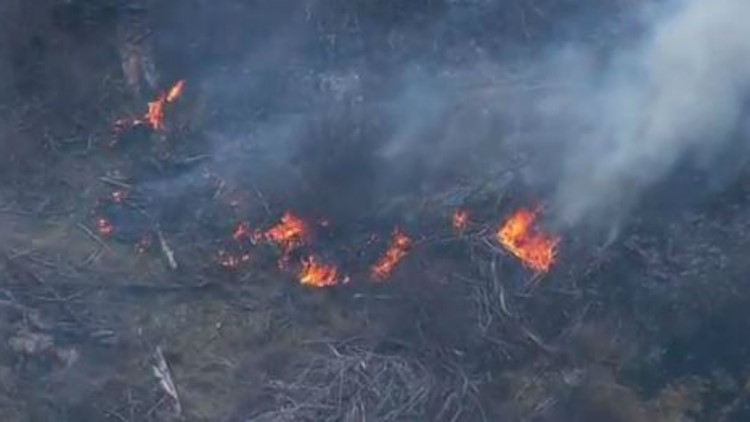 Western Washington had 50 fires this week after stretch of dry weather