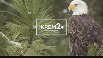 KREM News 7 a.m., Jan. 21, 2019