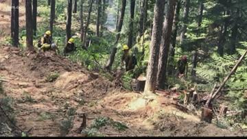 Three wildfires continue to burn through Washington, Idaho