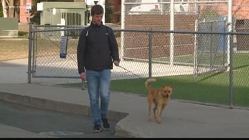 Meet 'Man's Best Friend,' a Gonzaga club dedicated to volunteering with animals