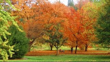 Love fall? Here are 5 ways to celebrate it in Spokane