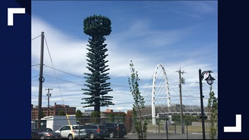 Revamped cell towers make for odd-looking trees in Spokane