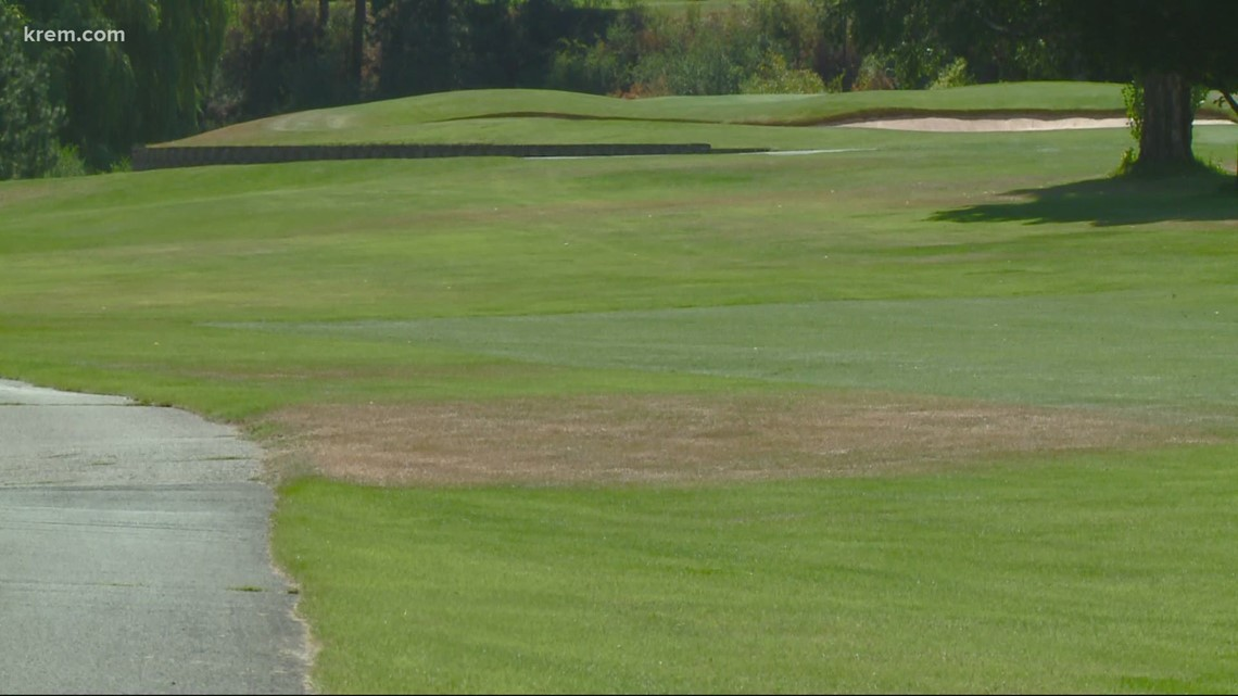 In historic drought, Spokane golf courses conserve water for wildfire fighting