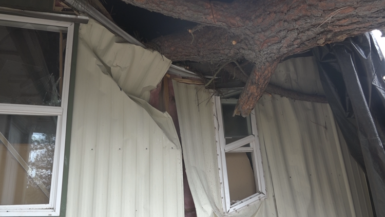 'I don't want to die': Cheney 7-year-old and family nearly crushed by tree during 2021 windstorm