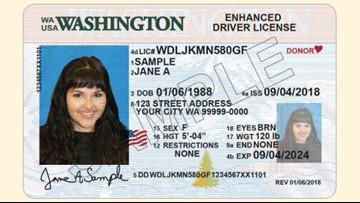 drivers permit cost washington state