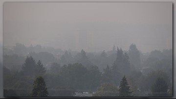 Here's why parts of North Idaho are experiencing poor air quality