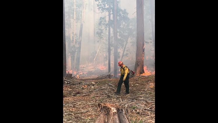 fire 1_1537935092753.jpg.jpg