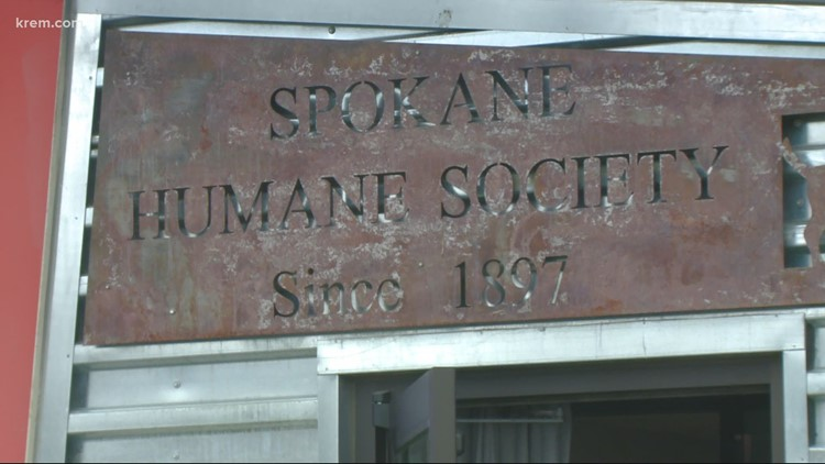 Spokane Humane Society receives $13,000 grant from Petco Love