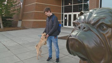 Meet 'Man's Best Friend,' the Gonzaga club dedicated to volunteering with animals in need