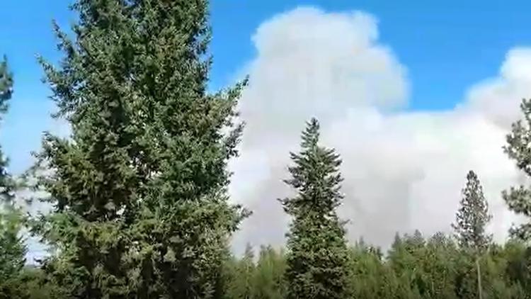 Nelson Creek Fire burning 35 acres near Elk, WA