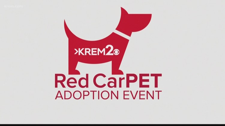 KREM Red CarPET 2020: Part 2