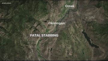 Man accused of stabbing mother to death arrested in Okanogan County, sheriff says
