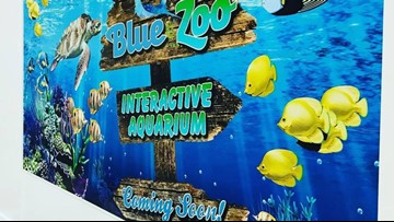 Interactive aquarium moving into Northtown Mall
