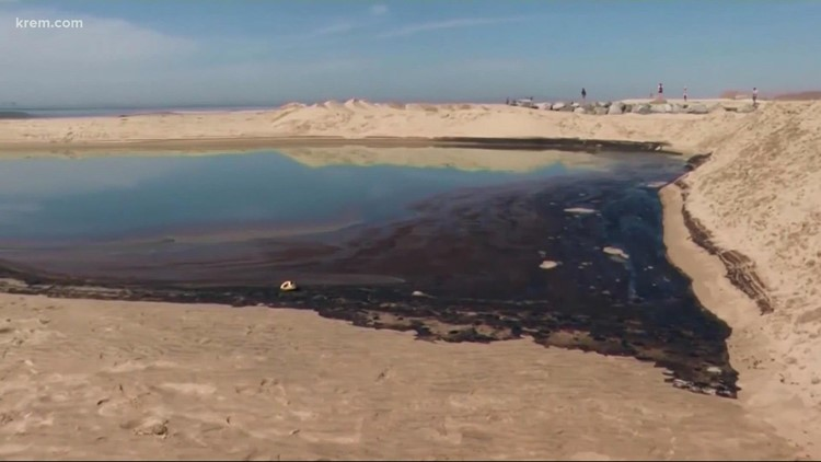 Massive oil spill kills wildlife, closes beaches in Huntington Beach