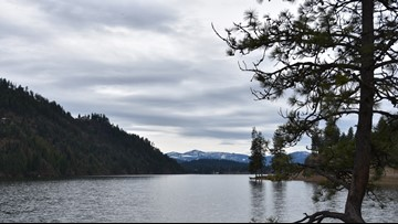 Idaho Fish and Game will dump 12K rainbow trout into Fernan Lake this month
