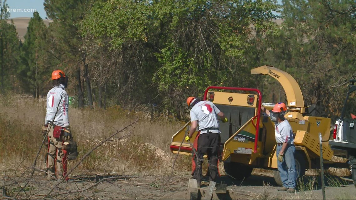 Team Rubicon heads to Malden to help remove thousands of trees killed by fire last year