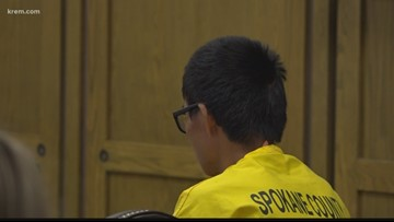 Teen accused of making threats to Lewis and Clark HS students takes plea deal