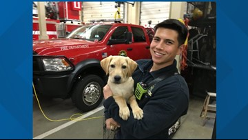Coeur d'Alene Fire Dept. welcomes new rescue canine, Lady