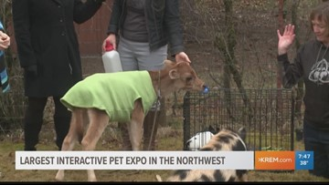 Northwest's Largest Interactive Pet Expo comes to Spokane