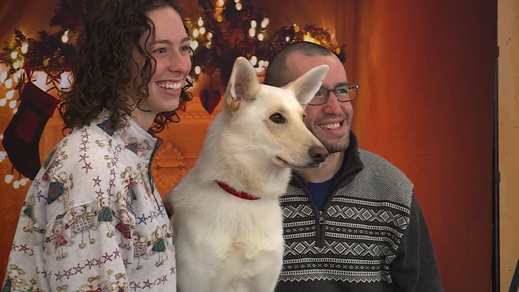 'They're a family member': Spokane shelters worry about holiday pet returns