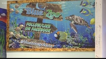 Multiple complaints claim animals, fish allegedly abused at Spokane's Blue Zoo Aquarium