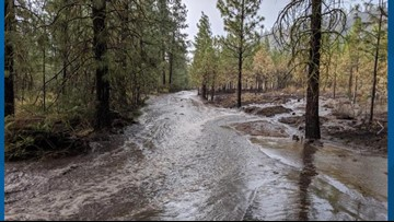 Flash floods hinder crews working to extinguish Williams Flats Fire