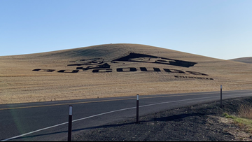 'Go Cougs!' Crop artist shows off WSU pride before homecoming game
