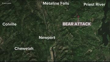 Bear attack reported bear Petit Lake