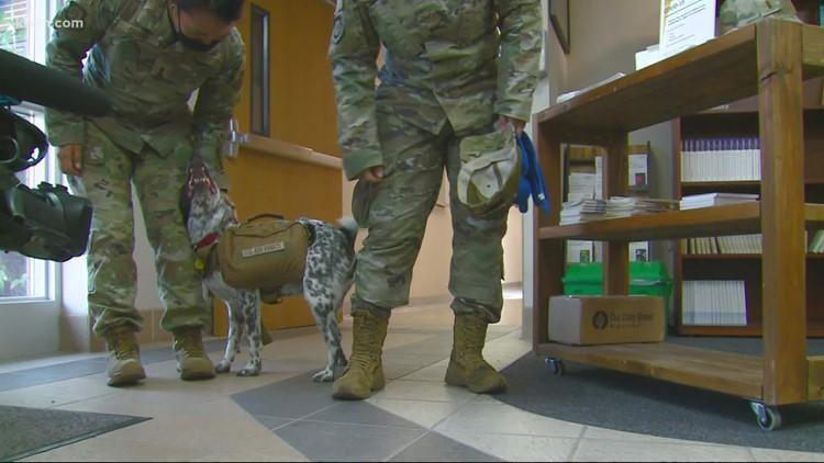 Fairchild Air Force Base celebrates National Dog Day