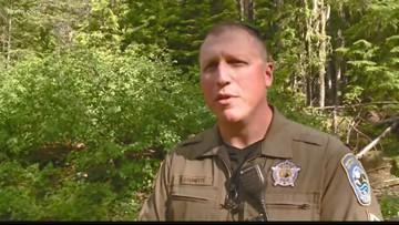 Bear shot and killed after charging man near Petit Lake