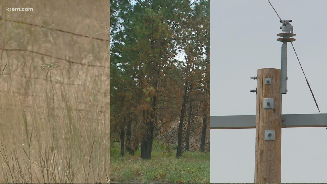 Wind, trees and powerlines: How these three things destroyed two towns
