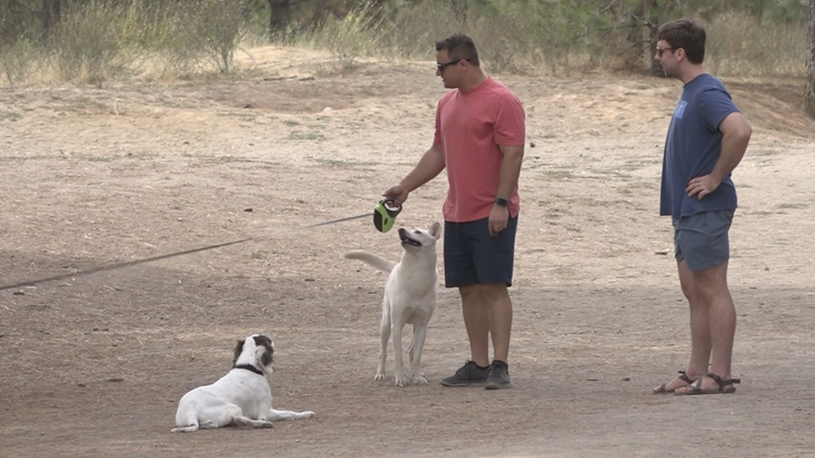 'Slap in the face': Community members fight to keep South Hill Dog Park