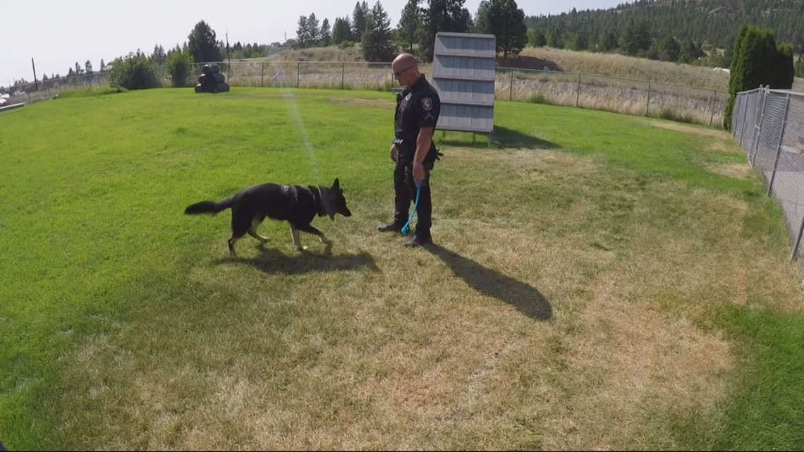 Spokane officer says reducing use of K-9s could do more harm than good