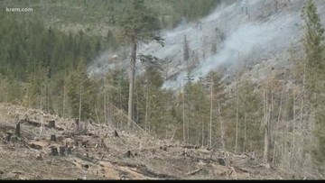 Prospect Fire near Harvard, Id., burns after dry weather in North Idaho