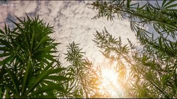 Bill to legalize hemp passes Idaho House